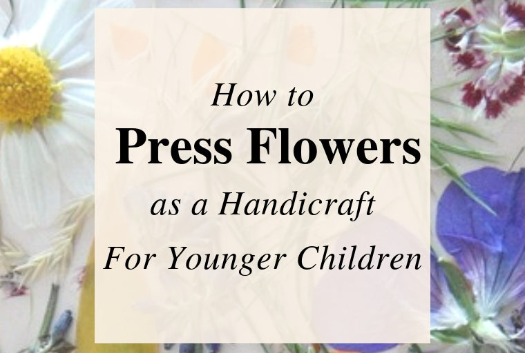 Handicraft for Younger Children: Pressed Flowers.